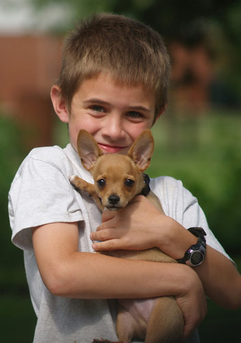Boy Holding Puppy